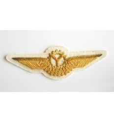 Emblema pilot aviatie 2