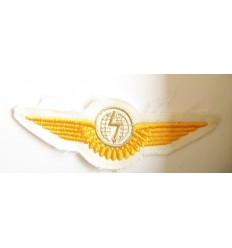 Emblema aviator aurie